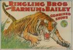 Poster do espetáculo - Ringling and Bros Barnun & Bailey -  Circus Tigre  medindo 85 x 57cm, Montado em duratex. Preço de avaliação R$ 500,00