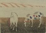 S/ASS - Cavalos, gravura aquarelada, medindo 8x10 cm, emoldurado 40x30 cm ( moldura c/ peq. lascado)