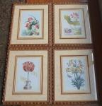 Quatro quadros decorativos  com motivos florais  emoldurado em vidro. Medida total: 64x54cm cada.