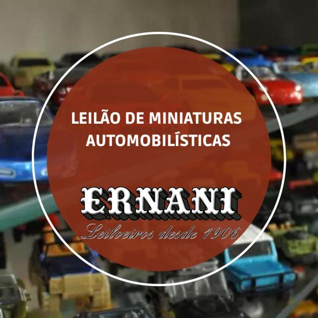 LEILÃO DE MINIATURAS AUTOMOBILÍSTICAS